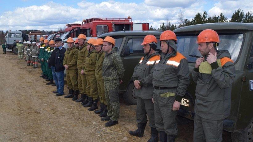 Фото министерства природных ресурсов и ЛПК Архангельской области