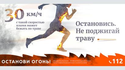 О возгорании в лесах можно сообщить по телефону «горячей линии» лесной охраны 8-800-100-94-00