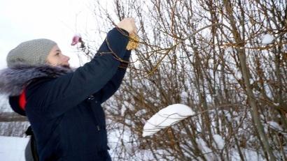 Юные экологи приступили к разработке и воплощению в жизнь собственных проектов. Фото: vk.com/ecovolunteer29