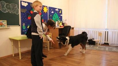 В коррекционном центре «Азимут» ведутся занятия по канистерапии