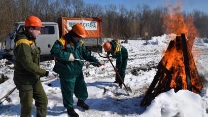 Фото пресс-службы министерства природных ресурсов и ЛПК Архангельской области