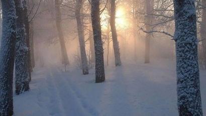 Фото: www.pomorland.travel