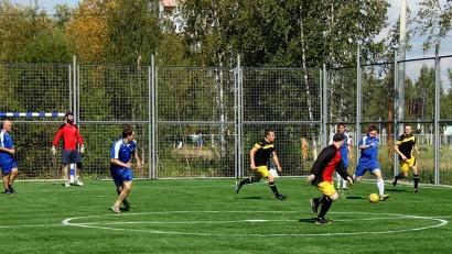 Покрытие поля сделано из современных материалов и не один год будет служить местным любителям спорта
