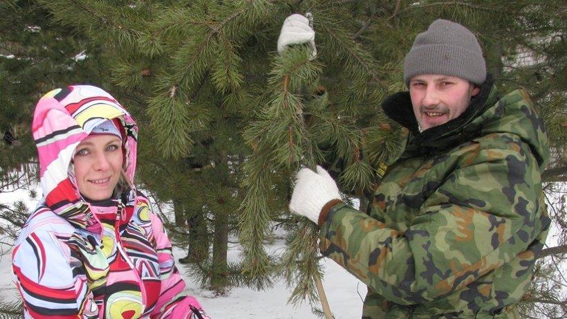 Совместно с учёными шишки собирали сотрудники министерства природных ресурсов и ЛПК Архангельской области и спортсмены Поморья