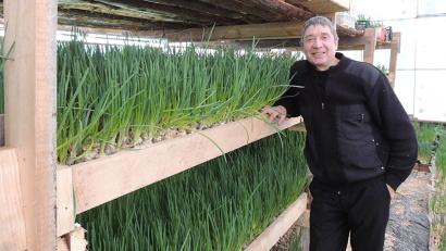 Николай Саидов с первым урожаем лука. Фото газеты «Устьянский край»