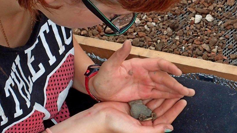 В ходе экспедиционной полевой работы школьники Архангельска участвовали в археологических исследованиях на территории Новодвинской крепости