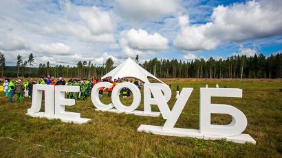Партнеры чемпионата в 2019 году предлагают профессиональным лесорубам 20 моделей суперсовременных лесных машин для участия в состязаниях