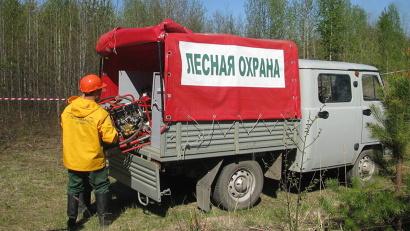 С начала сезона работники Единого лесопожарного центра ликвидировали 102 возгорания