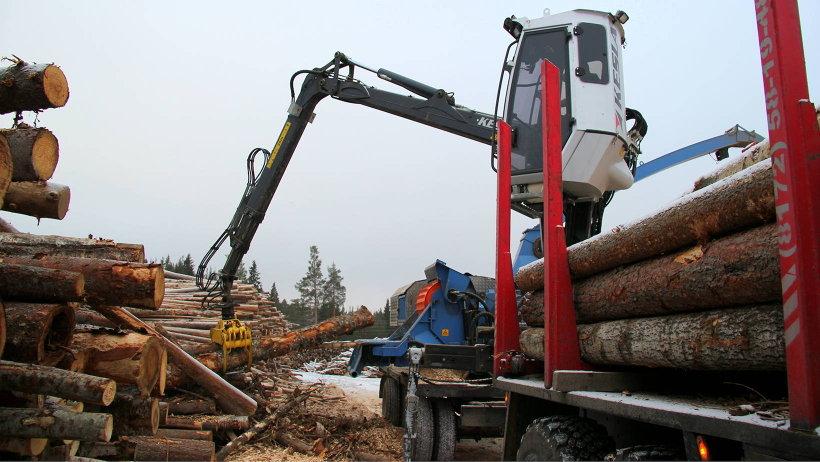Итогом совместной работы всех участников лесной промышленности станет создание эффективной модели взаимодействия