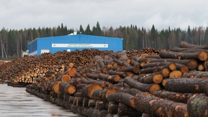 По темпам роста лесная отрасль занимает в Поморье второе место, уступая лишь добыче полезных ископаемых