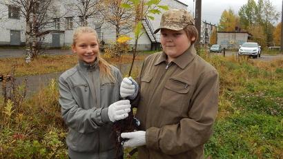 Около сотни сеянцев дуба предоставил школе Северный научно-исследовательский институт лесного хозяйства