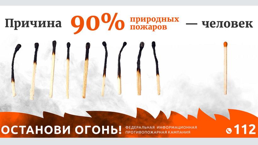 О возгорании можно сообщить по телефону «горячей линии» лесной охраны 8-800-100-94-00