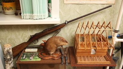 Музей насчитывает более 1000 экспонатов, связанных с историей становления и развития лесного дела на Севере России