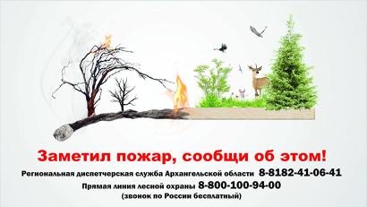 Успех в ликвидации лесных пожаров во многом зависит от своевременного обнаружения возгораний