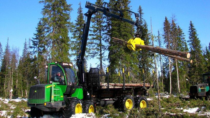 Аукционы призваны дать возможность легально и с выгодой работать небольшим леспромышленным предприятиям