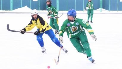 В соревнованиях приняли участие 12 команд из Архангельской, Мурманской и Ленинградской областей