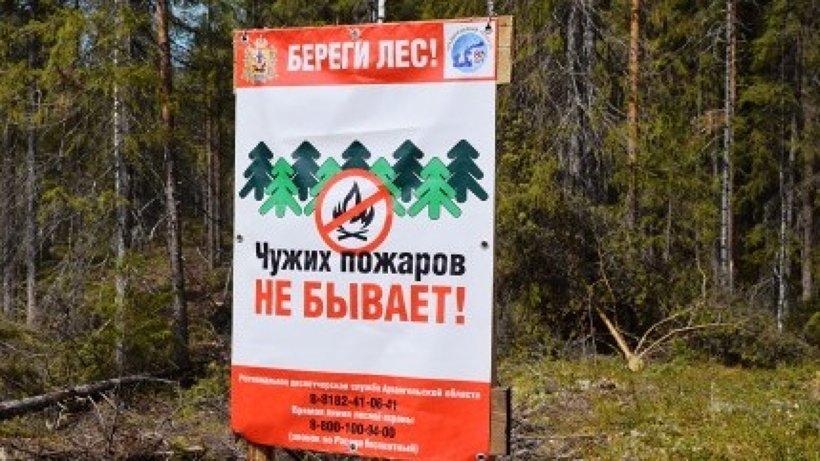 C 1 мая в лесах Поморья введен особый противопожарный режим