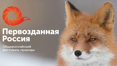 «Первозданная Россия» – это не только крупнейшая в стране выставка фотографий дикой природы, но и уникальная просветительская площадка