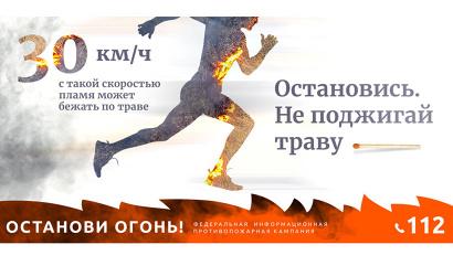 О возгорании в лесах можно сообщить по телефонам: 8-800-100-94-00, 8(8182) 41-06-41