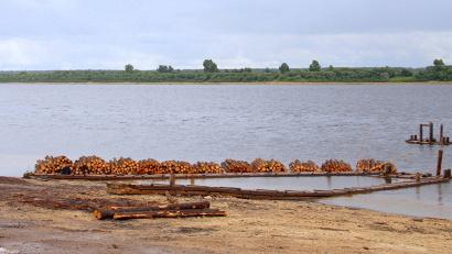 В 2013 году Виноградовский район сплавил по воде 87 тысяч кубов леса, а в эту навигацию – уже 248 тысяч кубометров