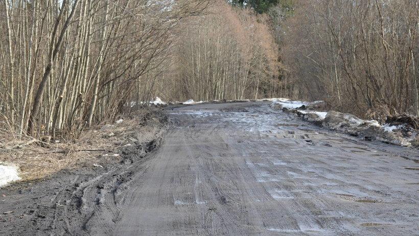 Так сегодня выглядит подъезд к Телешихе. Фото: пресс-служба министерства транспорта Архангельской области