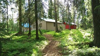 Лесные инспекторы обнаружили порядка десятка незаконных построек. В их числе не только простые рыбацкие избы, но и лесные дачи с банями, гаражами, теплицами и огородами