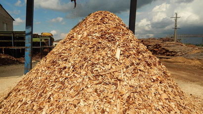 Успешный лесной бизнес Поморья использует 80-90 процентов своих отходов для утилизации их в ведомственных котельных и ТЭЦ