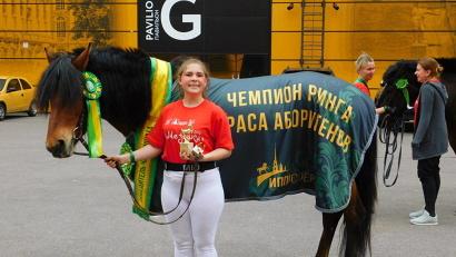 Мозаика – лошадь-мезенка из Кенозерского национального парка. Фото: Надежда Черенкова