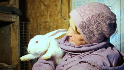 В 2014 году Галина Жданова получила областной грант на развитие крестьянского фермерского хозяйства по племенному разведению кроликов