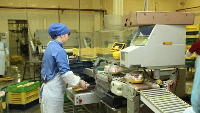 В год Уемская птицефабрика производит 8,5 миллионов яиц и 1 200 тонн мяса