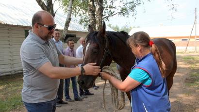Игорь Орлов высоко оценил успехи предприятия по возрождению славы коневодческого хозяйства