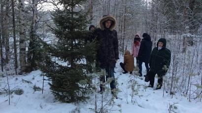 Фото министерство природных ресурсов и ЛПК Архангельской области