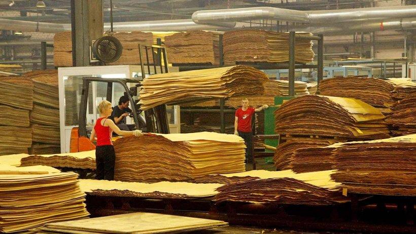 Инвестпроект предусматривает модернизацию фанерного производства с увеличением мощностей до 140 тыс. куб. м клееной фанеры в год