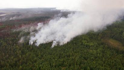 Всего с начала сезона в регионе произошло 47 лесных пожаров общей площадью 170 гектаров, 44 из них ликвидированы. Фото Артёма Никитина