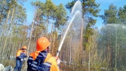 Фото: министерство природных ресурсов и лесопромышленного комплекса Архангельской области