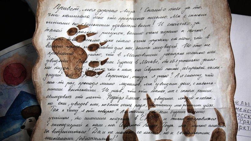 Проект «Письма животным» длился почти полгода. Фото предоставлено министерством природных ресурсов и лесопромышленного комплекса Архангельской области