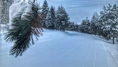 Фото Центра лыжного спорта «Малиновка»