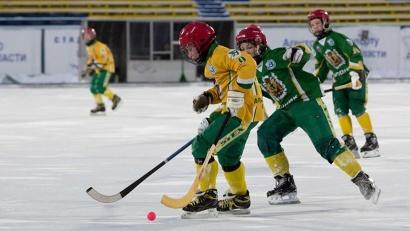 Зимой лёд «Труда» будет открыт для юных хоккеистов, а в летний период на поле стадиона станут тренироваться молодые футболисты