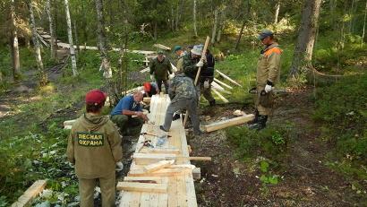 Участники акции проложили деревянный настил до самого родника