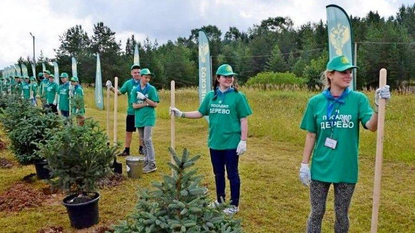 По оценке Рослесхоза, за время проведения акции было посажено более 200 миллионов деревьев
