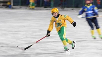 В турнире принимают участие 12 команд из Архангельской, Мурманской и Ленинградской областей